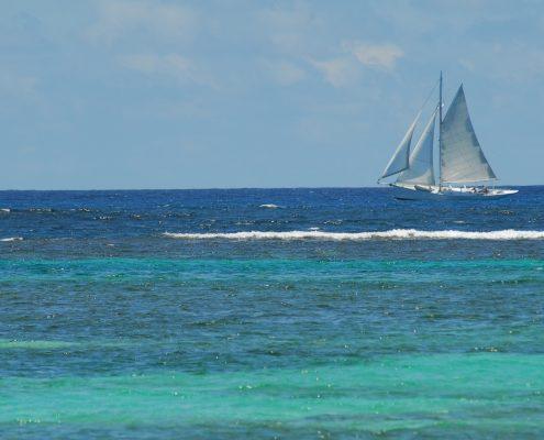 a-vela-ai-caraibi_martinica-barca