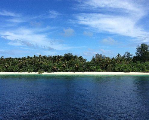Le Maldive in barca vegetazione